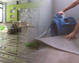 Water Damage Restoration Mississauga